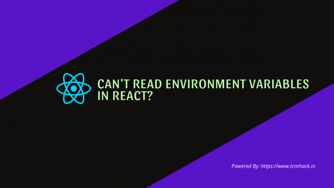 Can't Read Environment Variables In React?